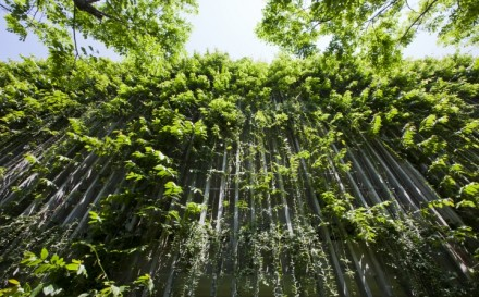 Naman-Retreat-the-Babylon-by-VTN-Architects-Da-Nang-Vietnam-09
