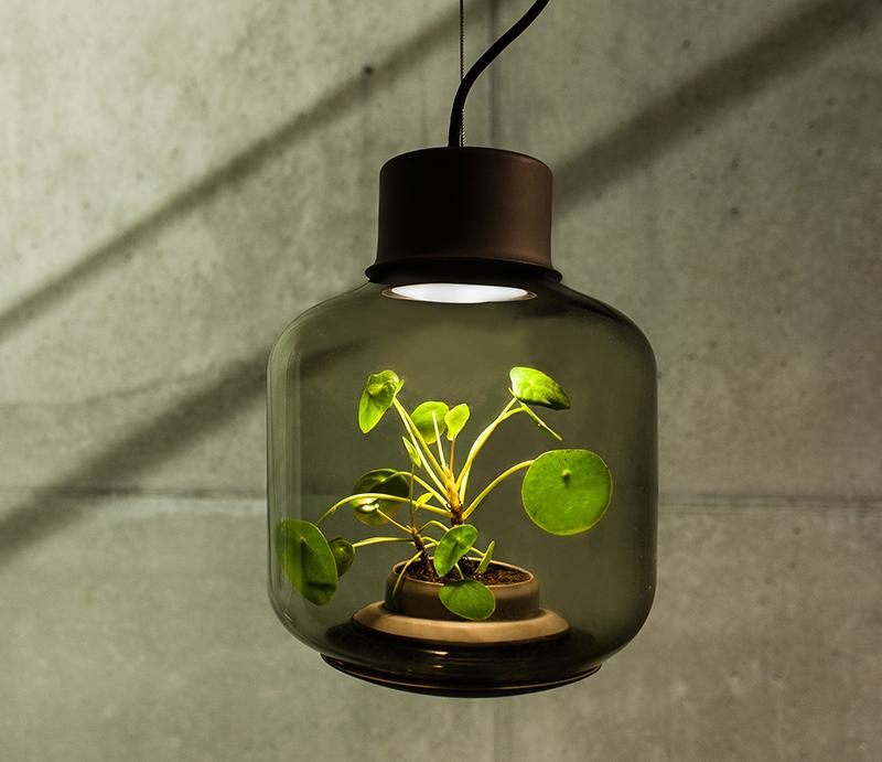 lamp_100316_01