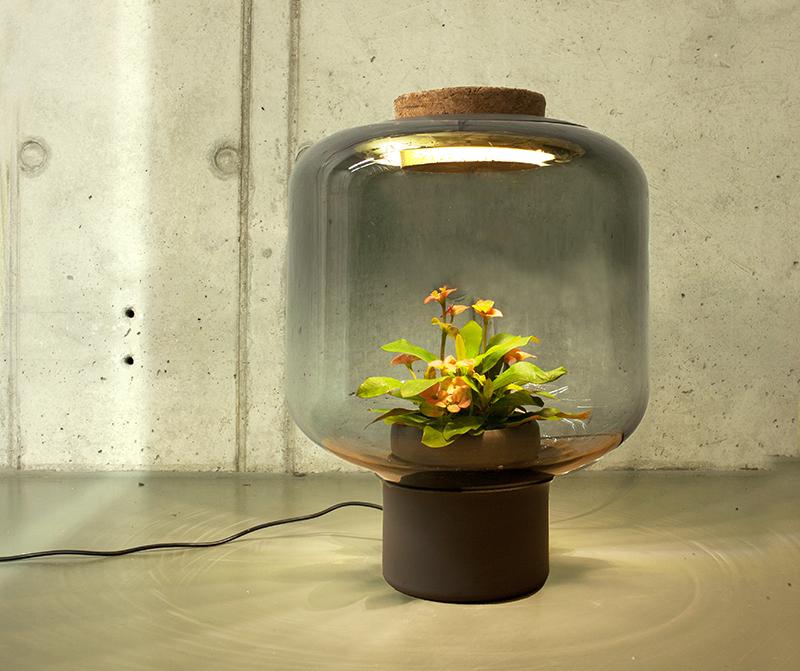 lamp_100316_02
